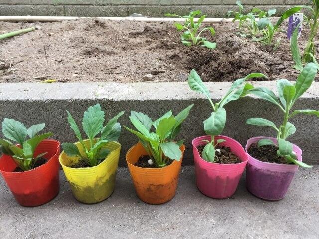土を処分したい!土を処分する3つの方法を知ろう!