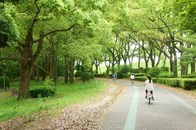 リサイクル自転車はどのような人が乗っているの?