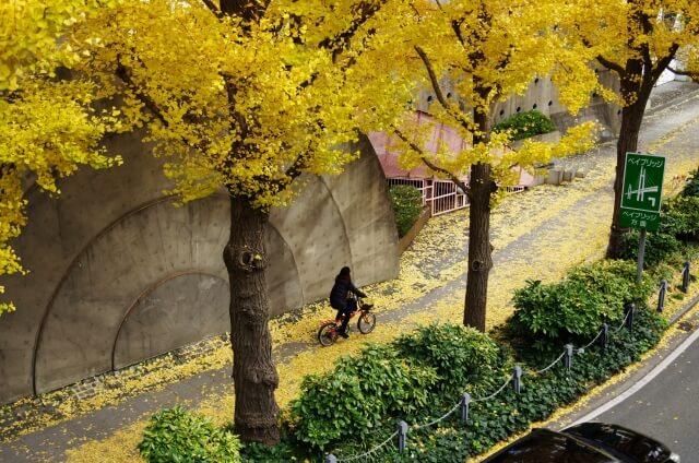 【リサイクル自転車】どうすればリサイクル自転車を手に入れられる?