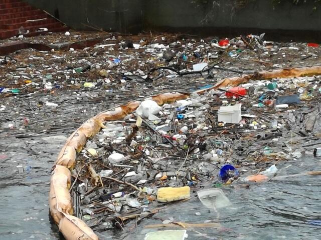 海洋環境を破壊するマイクロプラスチックとは?