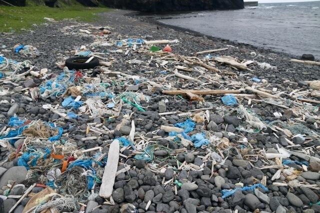 マイクロプラスチックの世界的問題