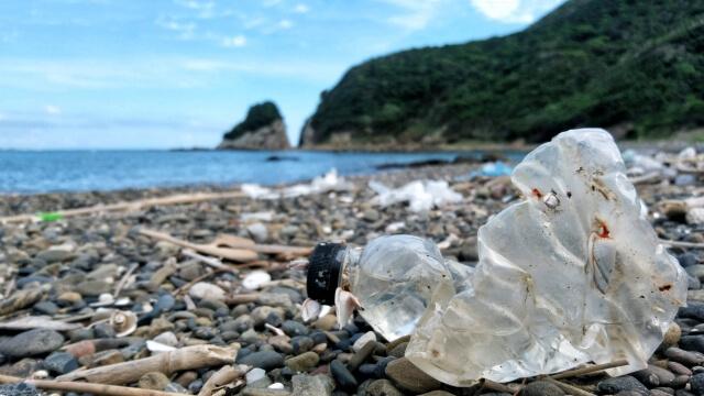 海洋汚染や地球温暖化につながる!マイクロプラスチック問題とは?